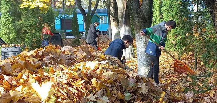 Уборка листьев на территории храмаПодробнее